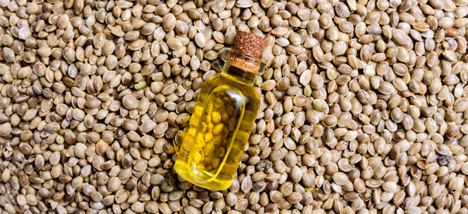 Hemp Oil Extract: Fact vs  Fiction | Metagenics Blog